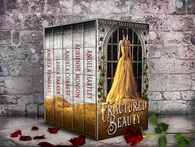 Fractured Beauty Box Set