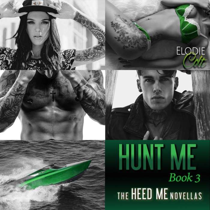 Teaser 5 - Hunt Me by Elodie Colt
