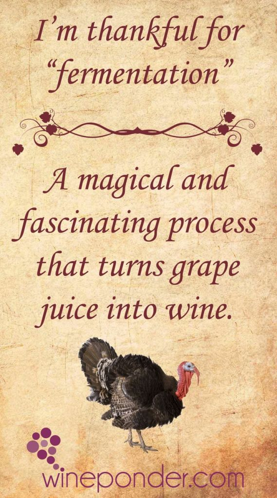 dc3956e22c6754c600620df3ec179d83--grape-juice-thankful-for