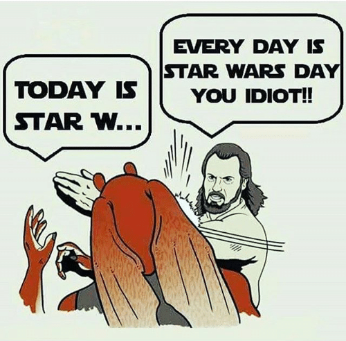 every-day-is-star-wars-day-today-is-you-idiot-22781860